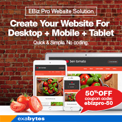 EBiz Pro Website Solution