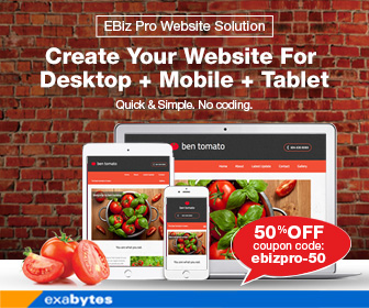 EBiz Pro Website Solution